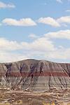 Petrified Forest National Park, Arizona, Painted Desert, Southwest, United States, USA,