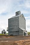 Corrugated grain elevators, Winona, Wash.