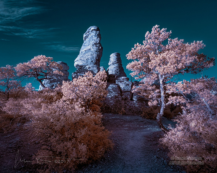Phantom's Thicket, Chiricahua National Monument (Infrared) ©2017 James D. Peterson.  If you hike the Echo Canyon Trail just after sunrise, you'll traverse this slightly supernatural scene.  My infrared camera had its own idea about what it should look like, and insisted on turning it into an alien dreamscape.