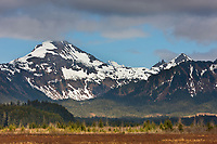 Chugach mountains, Copper River Delta, southcentral, Alaska.