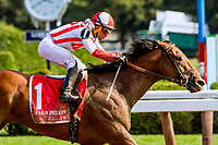 SARATOGA SPRINGS, NEW YORK - AUG 26:  Practical Joke#1, ridden by Joel Rosario , wins theH. Allen Jerkens at  Saratoga Race Course on August 26, 2017 in Saratoga Springs, New York.(Photo by Sue Kawczynski/Eclipse Sportswire/Getty Images)
