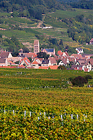 vineyard village gueberschwihr alsace france
