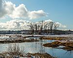 *** in Newbury, Massachusetts, USA