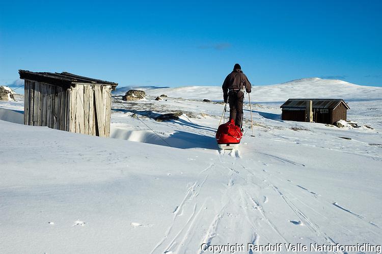 Mann på ski trekker pulk forbi sætre i Alvdal Vestfjell ---- Man pulling sled in Alvdal vestfjell