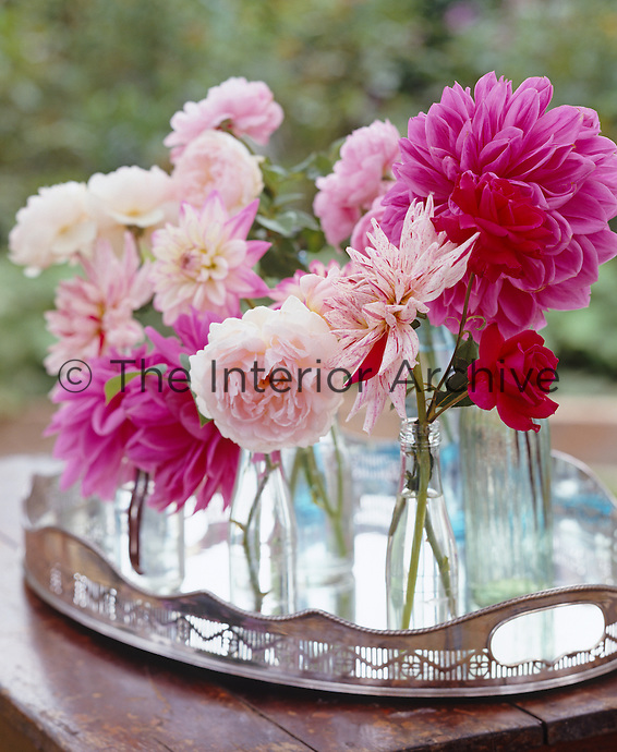 Detail of freshly picked pink roses and dahlias in small bottles on a silver tray on a table in the garden