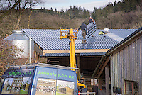 Two people on a farm building roof, Chipping, Lancashire.