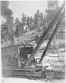 Original caption: H&amp;H timber sale near Vallecitos.  Scenes of stiff boom loaders use to load R.R. cars.  Shows partial cutting in yellow pine stands.<br /> Hallack &amp; Howard Lumber Co.  Carson National Forest, NM