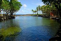 Ahalanui hot springs park, near Kapoho, Hawaii, Big Island of Hawaii