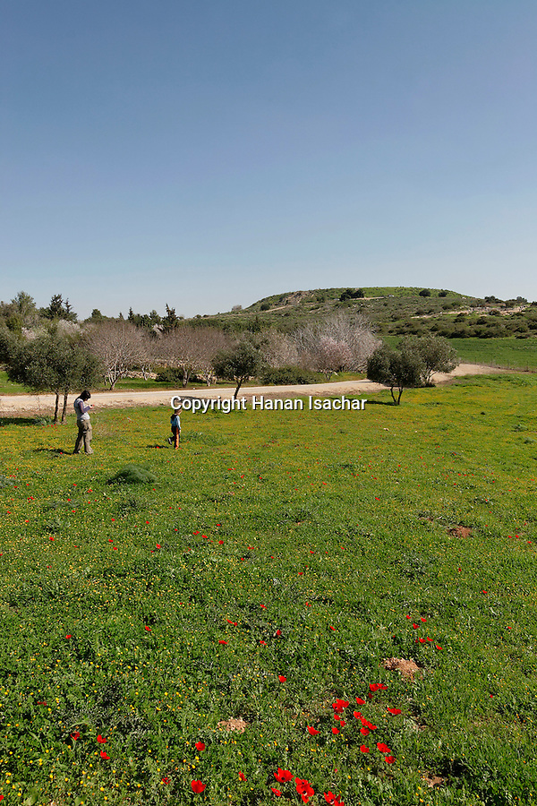 Israel, Shephelah region. A view of Tel Maresha