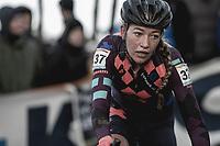 Sophie De Boer (NED/Breepark) cornering<br /> <br /> <br /> Women's Race<br /> UCI CX World Cup Zolder / Belgium 2017