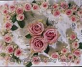 Interlitho-Alberto, FLOWERS, BLUMEN, FLORES, photos+++++,roses,KL16557,#f#, EVERYDAY