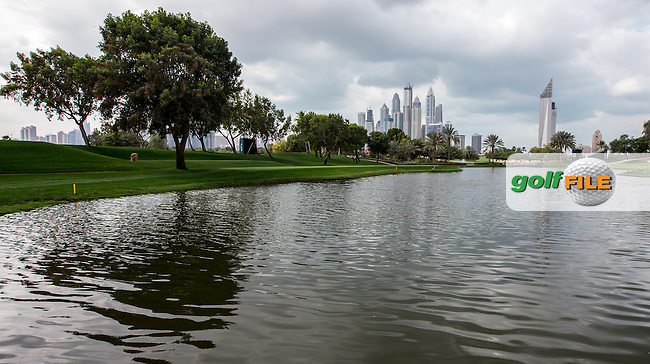 Lake beside the 5th green ahead of the 2016 Omega Dubai Desert Classic played at the Emirates Golf Club, Dubai, United Arab Emirates.  30/01/2016. Picture: Golffile | David Lloyd<br /> <br /> All photos usage must carry mandatory copyright credit (&copy; Golffile | David Lloyd)