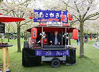 Nederland   Amstelveen   2017 04 08. Cherry Blossom Festival in het Amsterdamse Bos . Het Japanse Sakura (Kersenbloesemfestival) markeert de start van de lente. Volgens traditie vieren families en vrienden dit met een picknick onder de kersenbomen die in bloei staan. De gemeente Amstelveen organiseert dit festival voor de Japanse gemeenschap, als dank voor de schenking van 400 kersenbomen in 2000. Tako Yaki Japanse Poffertjes.     Foto mag niet in negatieve context gebruikt worden.  Berlinda van Dam / Hollandse Hoogte