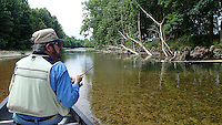 NWA Democrat-Gazette/FLIP PUTTHOFF <br /> Tonkinson fishes near the root wad of a fallen tree June 17, 2016 during a float trip on Flat Creek in southwest Missouri.