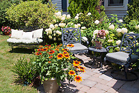 House, hydrangeas, garden bench, patio, great backyard landscaping