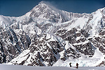Denali National Park, Alaska, Climbers on skis, Southeast Buttress, Denali, (Mount McKinley) view to the sumit from the Ruth Glacier, Don Sheldon Ampitheatre, Alaska Range, Alaska, U.S.A., North America, .