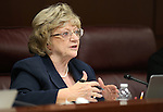Nevada Assemblywoman Joyce Woodhouse, D-Henderson, works in committee at the Legislative Building in Carson City, Nev., on Thursday, March 26, 2015. <br /> Photo by Cathleen Allison