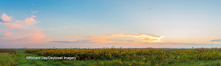 63893-03915 Sunrise over prairie Prairie Ridge State Natural Area  Marion Co. IL