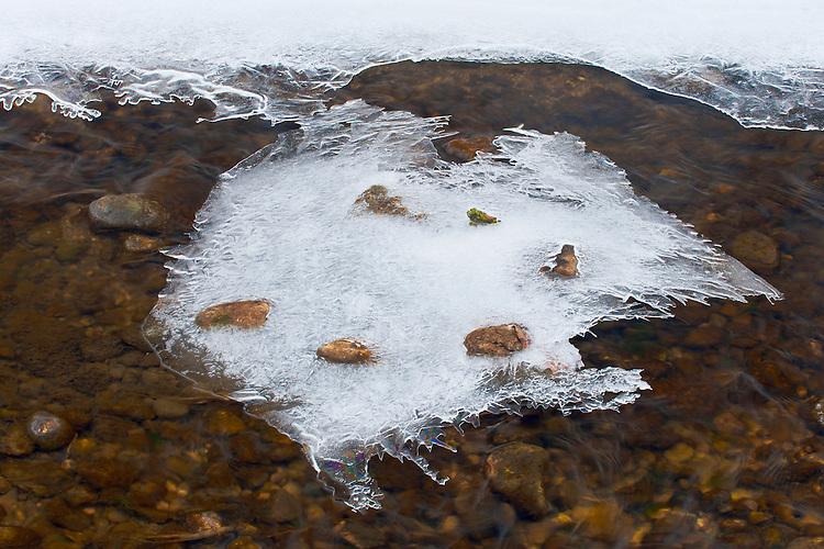 Ice formations along a creek leaving Lake Marmo at The Morton Arboretum; Lisle, IL