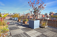 Roof Deck at 185 West Houston Street