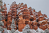 A fresh blanket of snow has covered the landscape at Red Canyon in the Dixie National Forest, Utah
