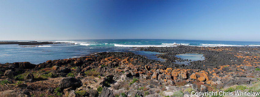 19_Warrnambool Coastal Park, Victoria