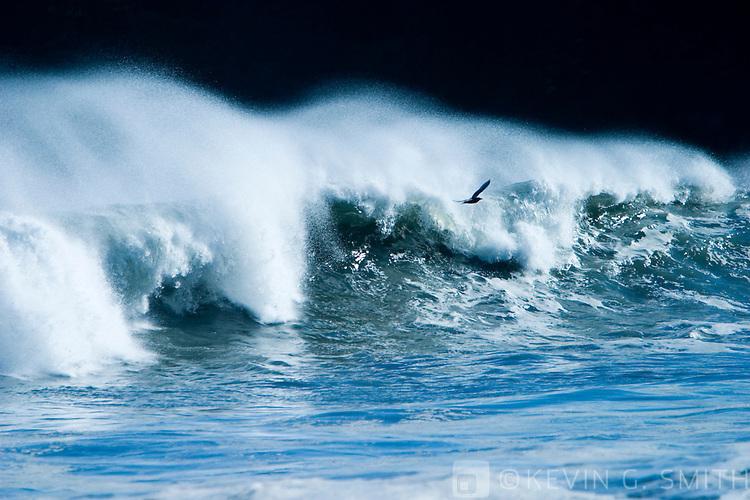 Breaking surf details, fall, Mill Bay beach, Kodiak Alaska, USA.