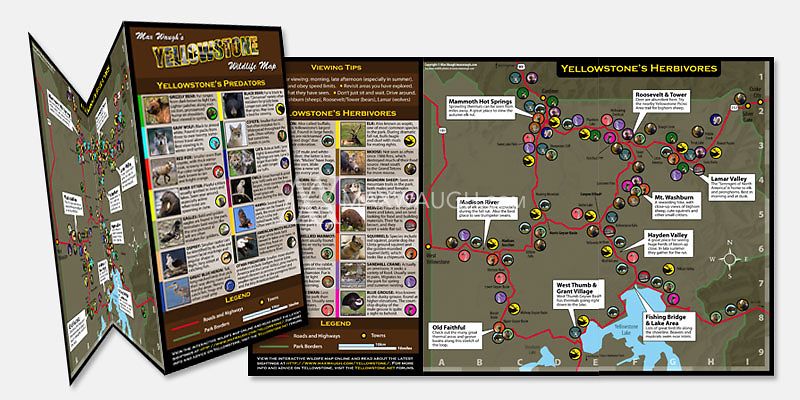 $7.99 <br />