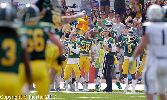 SPEARFISH, SD: SEPTEMBER 2: The Black Hills State sideline celebrates a good play against Adams State during their game Saturday at Lyle Hare Stadium in Spearfish, S.D.   (Photo by Dick Carlson/Inertia)