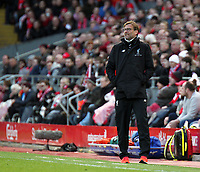 Liverpool manager Jurgen Klopp reacts from the dugout<br /> <br /> Photographer Rich Linley/CameraSport<br /> <br /> The Premier League - Liverpool v Burnley - Sunday 12 March 2017 - Anfield - Liverpool<br /> <br /> World Copyright &copy; 2017 CameraSport. All rights reserved. 43 Linden Ave. Countesthorpe. Leicester. England. LE8 5PG - Tel: +44 (0) 116 277 4147 - admin@camerasport.com - www.camerasport.com