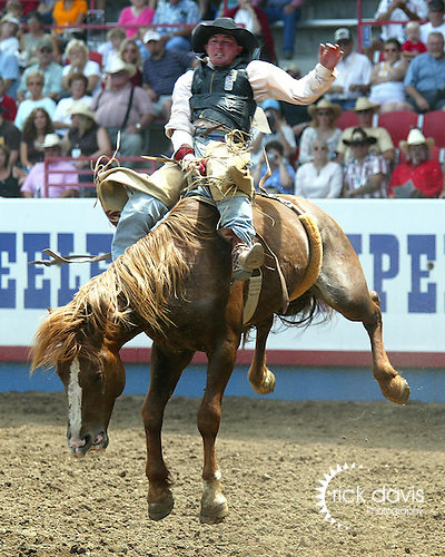 Cleve Schmidt scores an 84 point bareback ride on Beutler and Son Rodeo Company bronc South Coast during the short go round of the 2006 Greeley Independence Stampede Rodeo on July 4, 2006.<br />