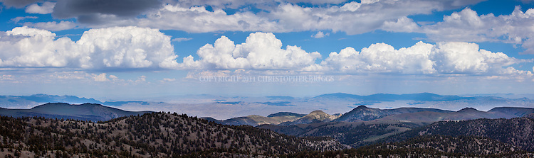 Panoramic view of Ancient Bristlecone Pine Forest, viewed from the White Mountians into Nevada on a summer afternoon.