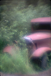 ford, model t , rusty, pink,auto ,car, weeds,