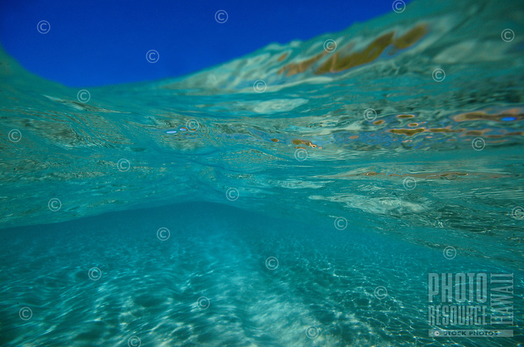 view of clear blue sky from under tropical ocean water