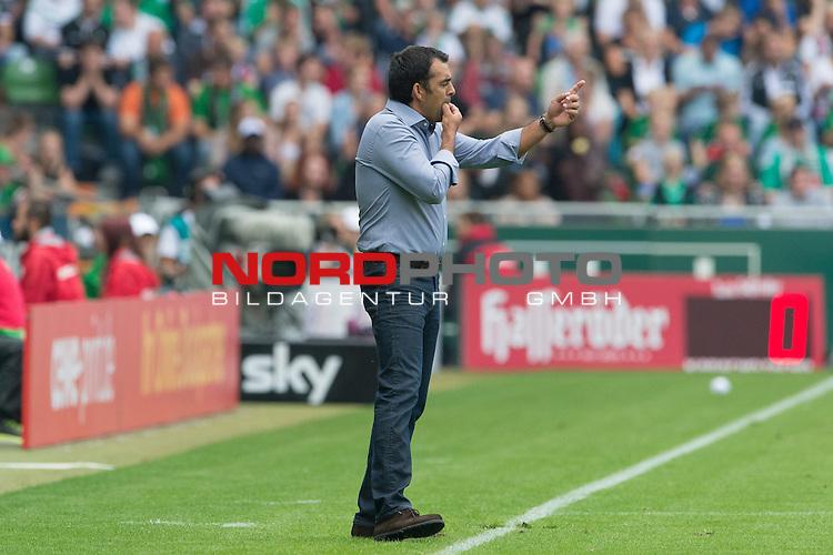 17.08.2013, Weser Stadion, Bremen, GER, 1.FBL, Werder Bremen vs FC Augsburg, im Bild<br /> Robin Dutt (Trainer Werder Bremen)<br /> Gestik, Mimik,<br /> <br /> Foto &copy; nph / Kokenge
