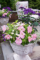 Cement pot container garden of annual petunia, Leucanthemum, Heliotropium Marine heliotrope, bacopa, on stone patio near chair patio furniture, pink and purple color theme, harmonious plantings