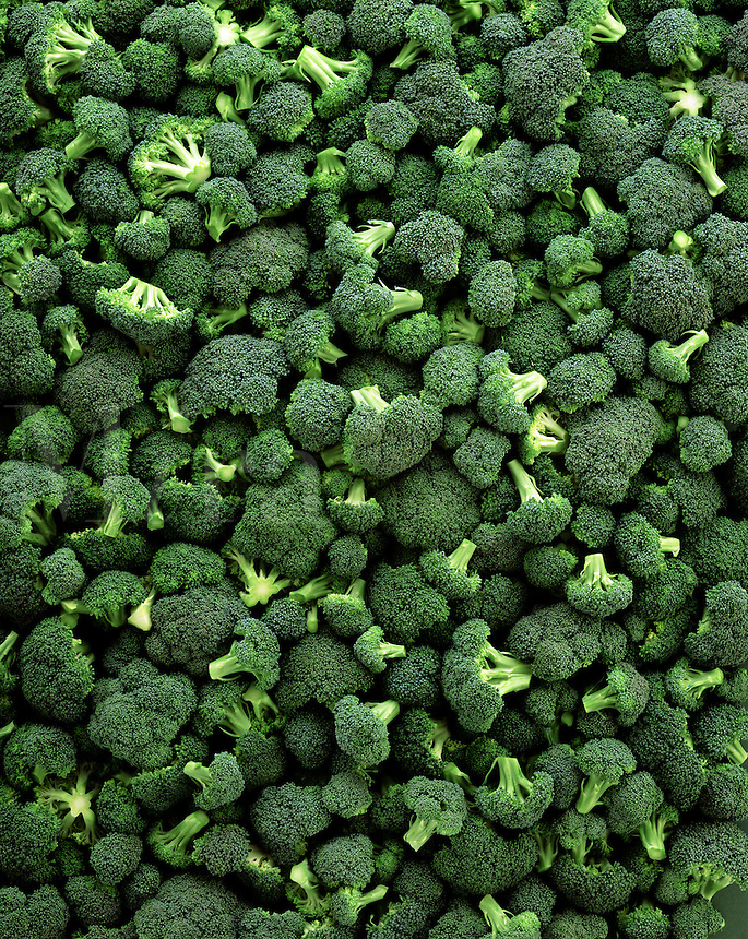 Full frame of BROCCOLI flowerettes.