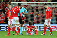 Hal Robson-Kanu of Wales (9) protests to referee Damin Skomina for a foul on Joe Allen who sits on the ground  with a suspected head injury during the FIFA World Cup Qualifier Group D match between Wales and Republic of Ireland at The Cardiff City Stadium, Wales, UK. Monday 09 October 2017