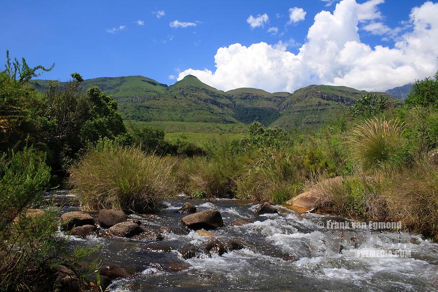 Mountain stream at Monk's Cowl..Summer, December 2007.Drakensberg, KwaZulu Natal, South Africa.