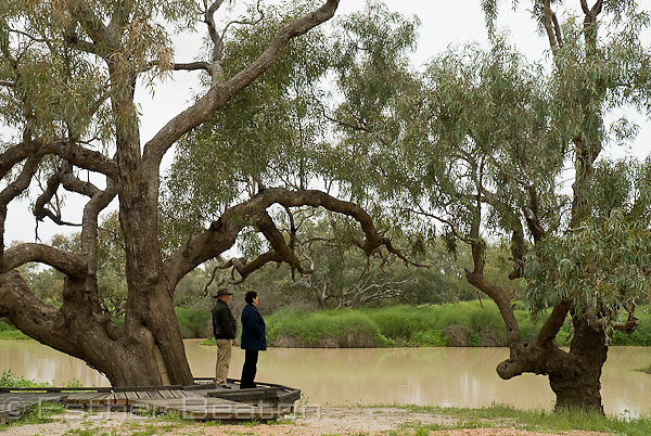 Tourists at Dig Tree, Nappa Merrie, Channel Country, Queensland