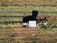 Harvesting Alfalfa for cattle feed. Rancho Olimpo, Atitalquia, Hidalgo, Mexico