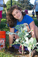 Kate Hollis,'20, volunteers at the Methodist Community Gardens in Middletown while taking part in the Salve Regina Service Plunge.