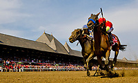 SARATOGA SPRINGS, NY - AUGUST 25: Abel Tasman  #1, ridden by jockey Mike Smith, wins the Personal Ensign Stakes on Travers Stakes Day at Saratoga Race Course on August 25, 2018 in Saratoga Springs, New York. (Photo by Bruce Dudek/Eclipse Sportswire/Getty Images)