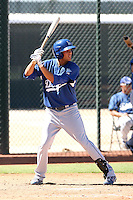 Pedro Guerrero - Los Angeles Dodgers - 2010 Instructional League.Photo by:  Bill Mitchell/Four Seam Images..