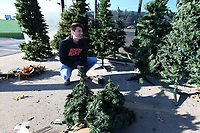 NWA Democrat-Gazette/J.T.WAMPLER Jon Terra of Fayetteville sets up Yule trees Wednesday Nov. 27, 2019 at Potter's House Thrift Store in Fayetteville. The store is having a Black Friday sale with everything in the store marked down fifty percent. The non profit reduces and discounts the prices of items based on the length of time they are in inventory. Funds raised go to the ministry of Potter's House.