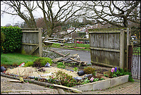 BNPS.co.uk (01202 558833)<br /> Pic: JimDurkin/BNPS<br /> <br /> Property damaged at Alder Road, Branksome, Poole, after car smashes through back garden fence.<br /> <br /> A learner driver had a lucky escape when she lost control of her car and left a trail of destruction in her wake.<br /> <br /> The inexperienced young woman demolished a wooden fence before tearing across a back garden and ploughing into the fence on the other side.<br /> <br /> Her Vauxhall Corsa then travelled across a road, knocked over two bollards and another fence before coming to a stop on the edge of the steep bank.<br /> <br /> The dramatic incident happened in Poole, Dorset.