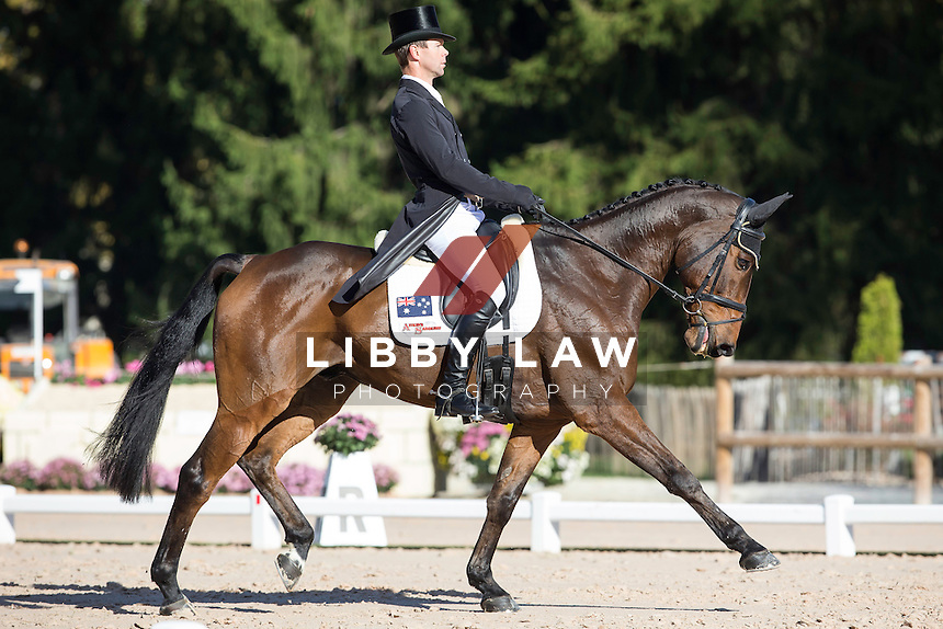 AUS-Kevin McNab (FERNHILL NOW OR NEVER) INTERIM-11TH: CIC2* DAY ONE OF DRESSAGE: 2014 FRA-Les Etoiles de Pau (Thursday 23 October) CREDIT: Libby Law COPYRIGHT: LIBBY LAW PHOTOGRAPHY - NZL