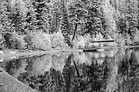 Infrared photo of reflection on Bowman Lake. Bowman Lake is located in the North Fork area of Glacier National Park approximately 32.5 miles from the west entrance, and 30 miles from the Canadian border. The drive to Bowman Lake is a very slow, dusty, and bumpy ride on dirt roads, and passes through the tiny community of Polebridge and sections of the park that notably burned in 1988.