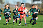 Rippa Rugby at Sport Park Motueka. Nelson, New Zealand. Saturday 10 May 2014. Photo: Chris Symes/www.shuttersport.co.nz