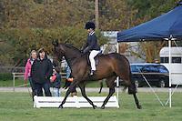 Champion Rider 9-12